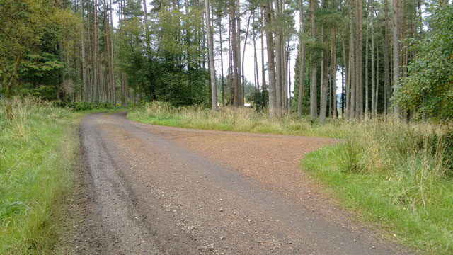 long distance national trail england walk hike trek forest redesdale