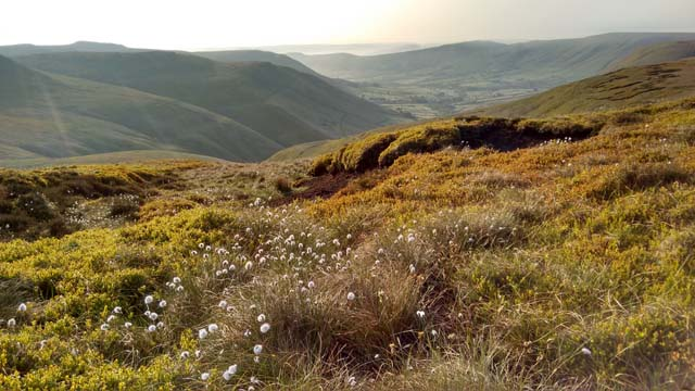 hope valley peak district derbyshire england pennine way cotton grass