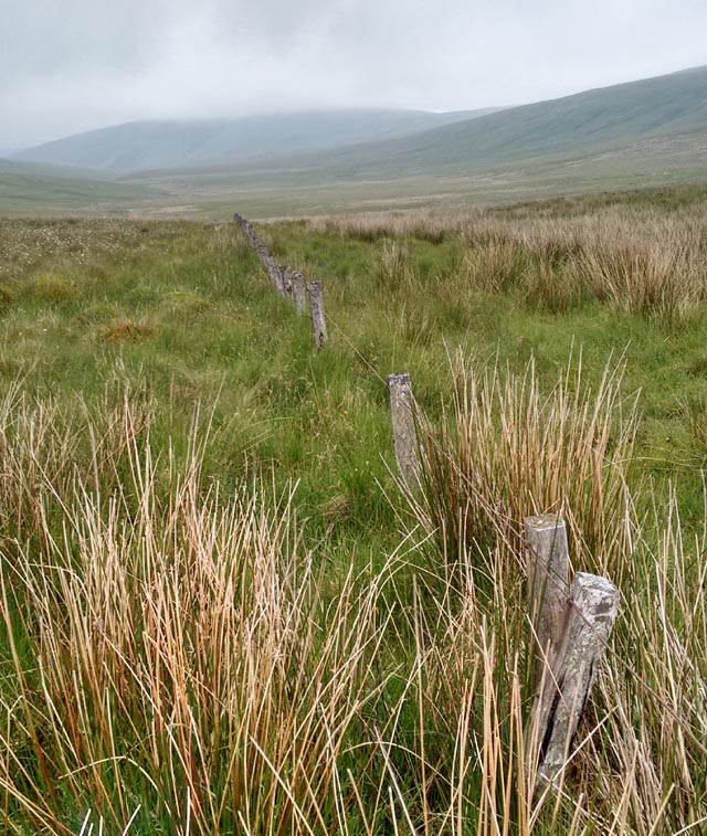 northumberland cheviot hills fells fence hike walk trek national trail england