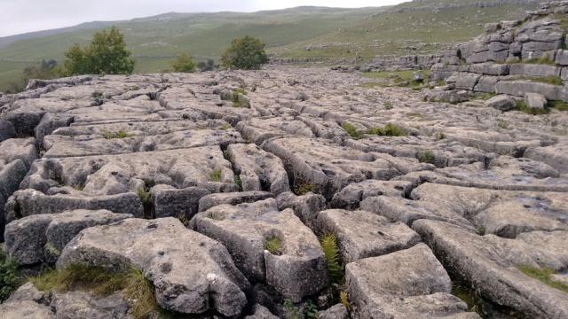 dales limestone karst