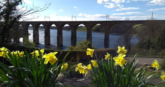 berwick-upon-tweed-rail-bridge