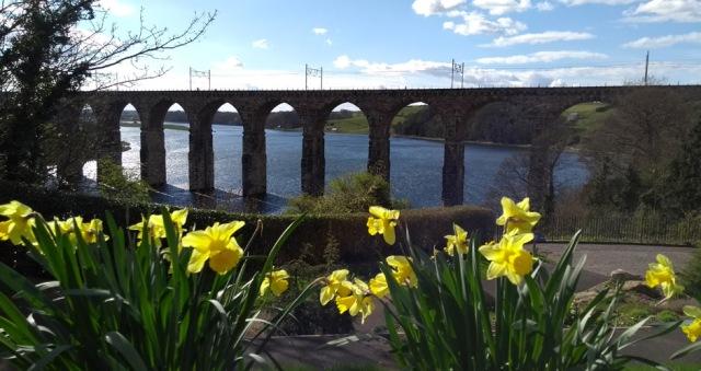 berwick-upon-tweed-rail-bridge