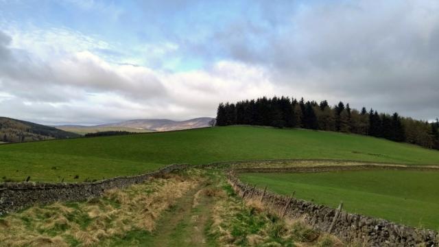 cross-borders-drove-road-scotland