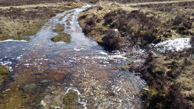 glen-tilt1-scottish-national-trail