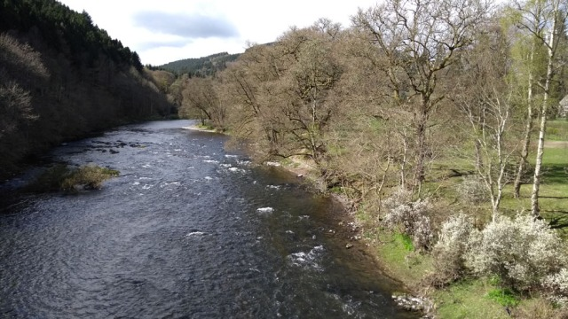 river-tweed-scotland