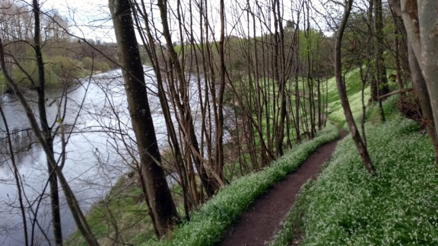 river-tweed-scottish-national-trail