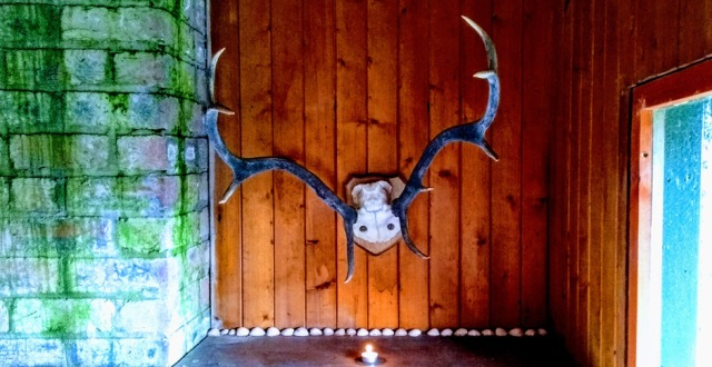 bothy-aberfeldy-scotland-antlers