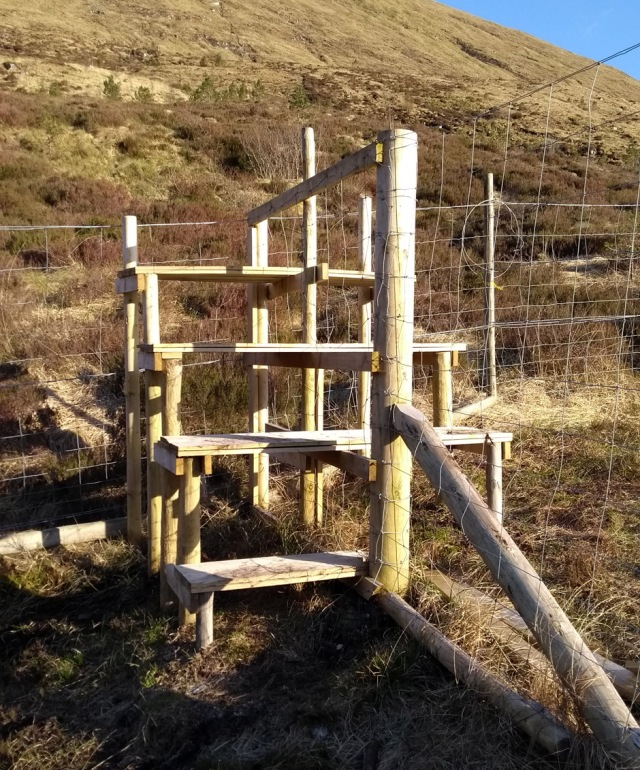 Deer fence stile in the highlands of scotland