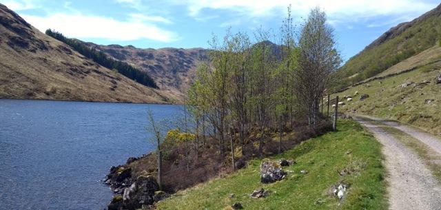 strath duilleach in kintail, highlands of scotland