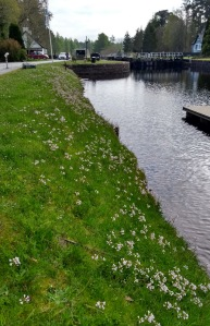 Kytra Lock on the Caledonian Canal, Scotland