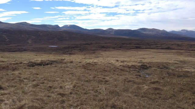 peat bog in scotland highlands