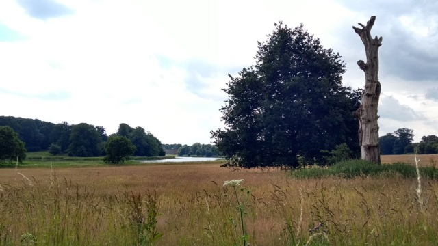 blickling park in norfolk england on the weavers way