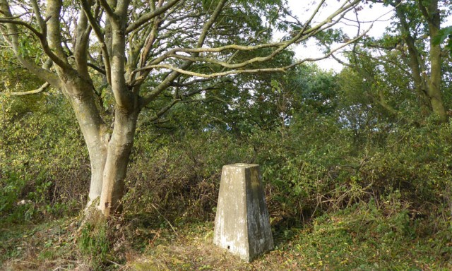 trig point at kelling heath in north norfolk