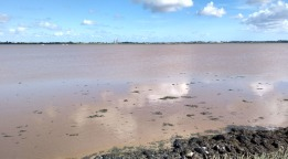 breydon-water-mud-england