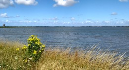 breydon-water-norfolk-broads-england