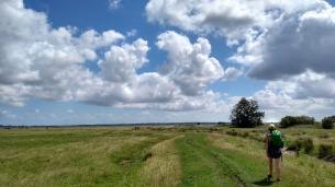 halvergate-marshes-norfolk-england