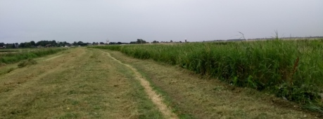 weavers-way-thurne-norfolk-england