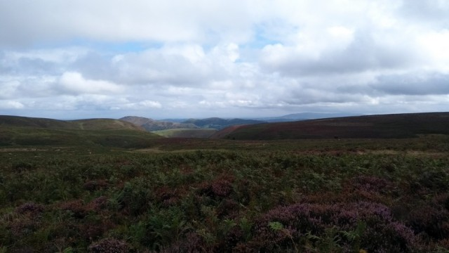 moorland in shropshire england