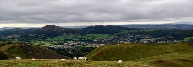 sheep and hills in shropshire england