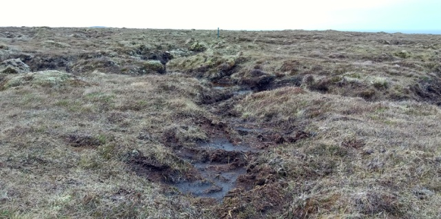 north-lewis-bogs-hebridean-way