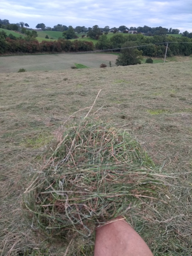 cravendale haylage