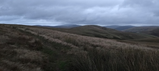cheviot northumberland windy gyle