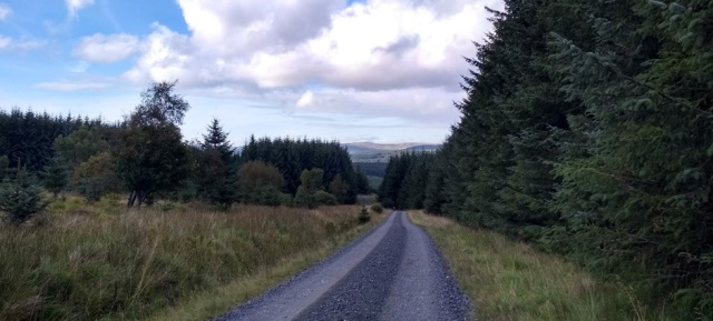 pennine-way-kielder-forest-northumberland