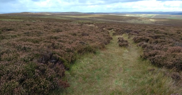 pennine-way-lough-shaw-northumberland