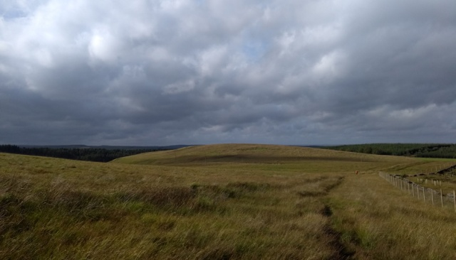 pennine-way-wark-forest