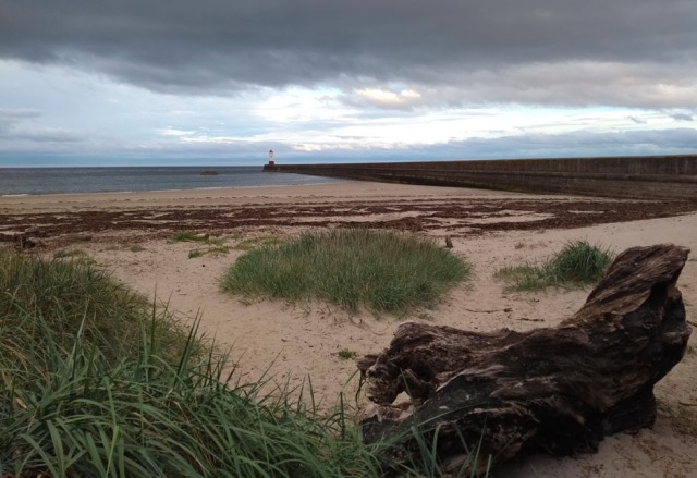 berwick-harbour-beach