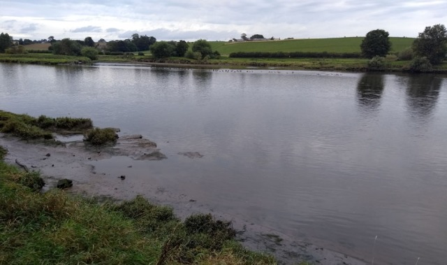 tidal river tweed near berwick