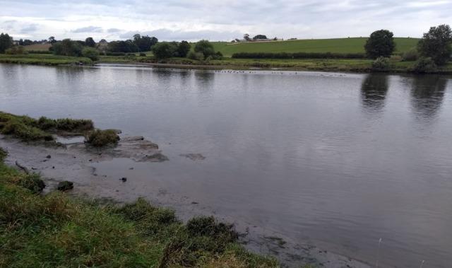 tidal river tweed near berwick