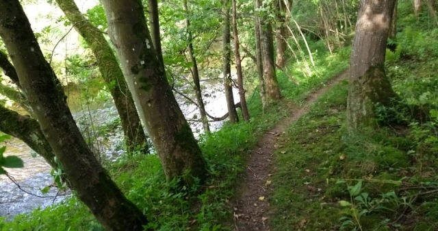 river-tweed-path-northumberland
