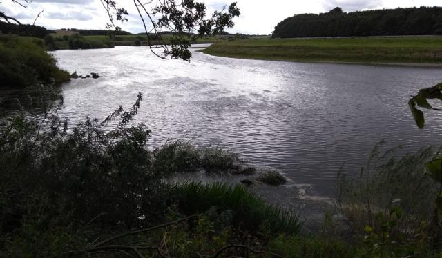 riverbank-path-tweed