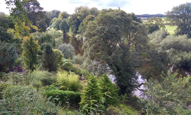 teviot-smokery-water-gardens-scotland