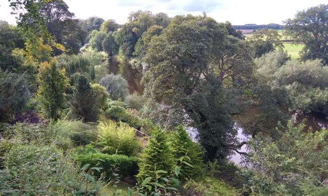 teviot-smokery-water-gardens-scotland