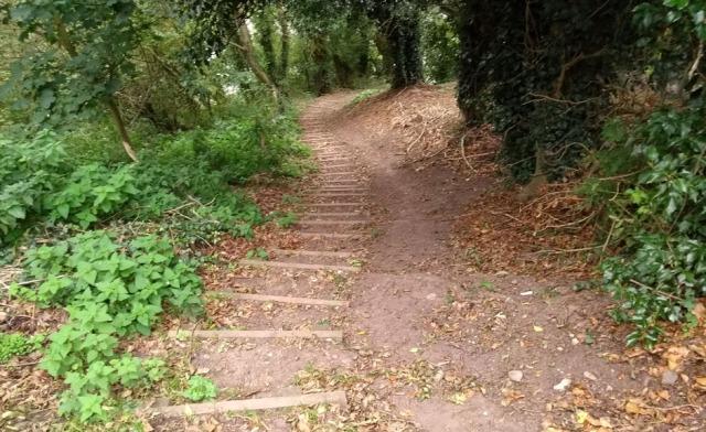 tweed-bank-path-northumberland