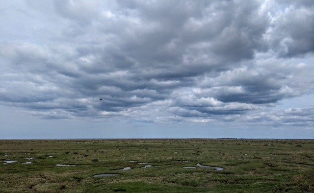 norfolk stiffkey marshes