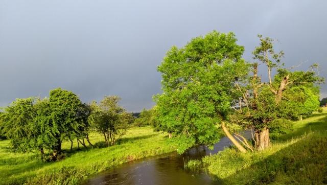 c2c-staffordshire-sunshine