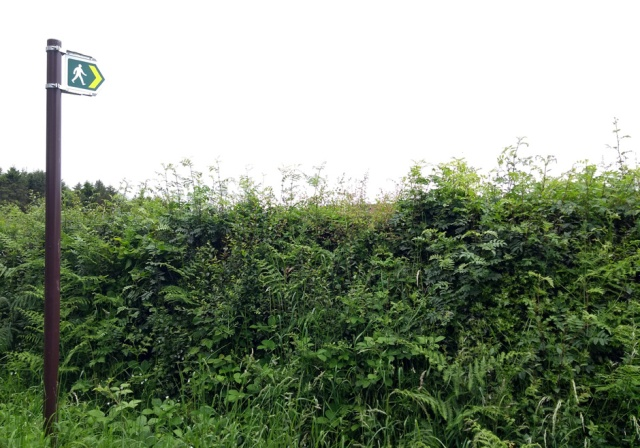 c2c-denbighshire-path-sign