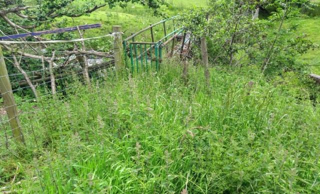 c2c-denbighshire-path